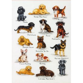 Sampler de Perros