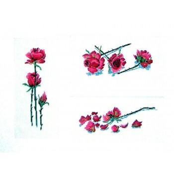 Rosas de Tallo Largo