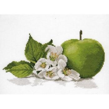 Aroma de Manzana