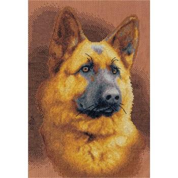El Perro Muchtar
