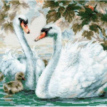 Cisnes Blancos