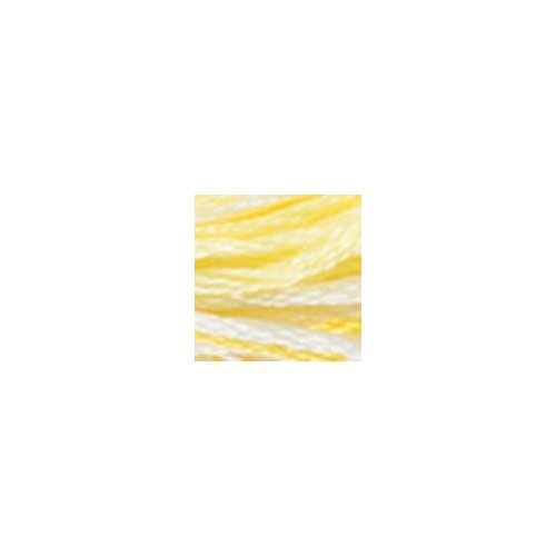 Hilo Color Variations DMC 4077