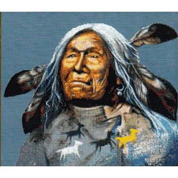 Nativos Americanos: Anciano