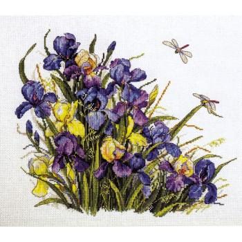 Irises Merejka K-122A