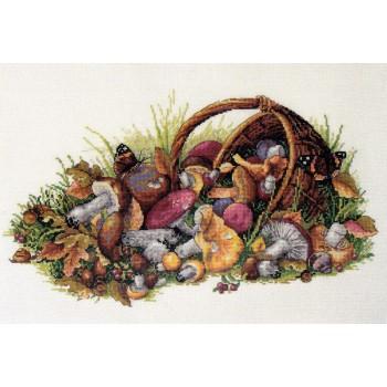 Cesta de Champiñones Merejka K-127 Mushrooms