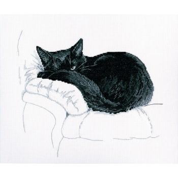 Entre Gatos Negros RTO M668 Among Black Cats