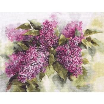 Acuarela de Lilas Alisa 2-45 Watercolor Lilac