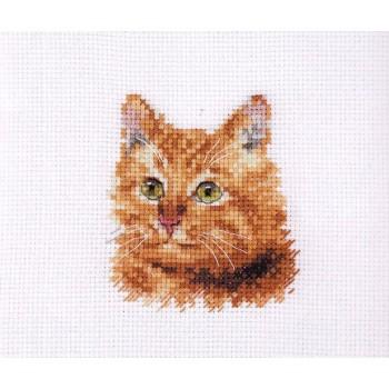 Gato Dorado Alisa 0-207 Ginger Cat