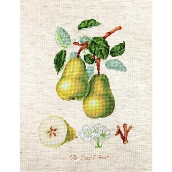Peras Luca-S BA22420 Dutch Pear