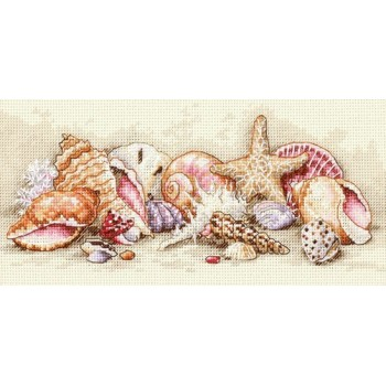 Tesoros de Conchas Dimensions 65035 Seashell Treasures