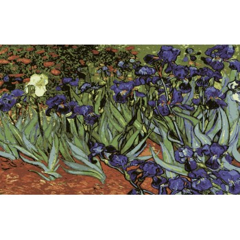 Campo con Irises de Van Gogh Collection d'Art