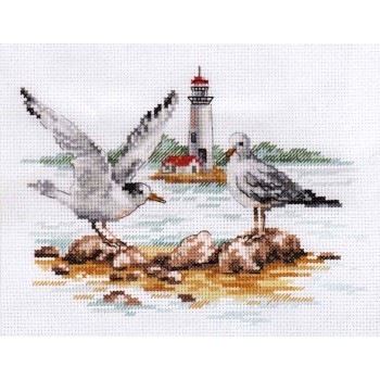 Gaviotas Alisa 3-30 Shoal Gulls
