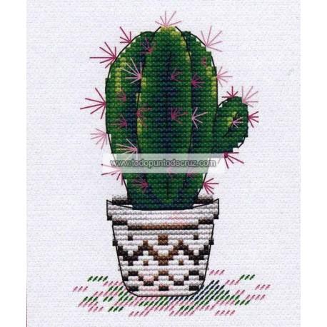 Cactus MP Studia M-382 Fresh Cactus