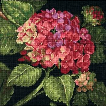 Hortensia en flor Dimensions D20053 Hydrangea Bloom