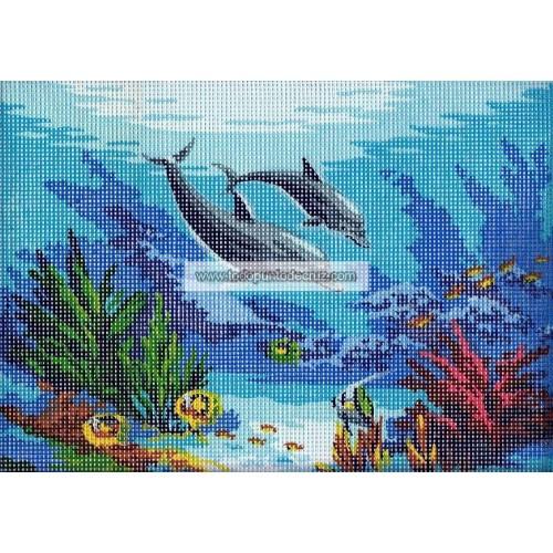 Delfines en el Fondo del Mar (NP)