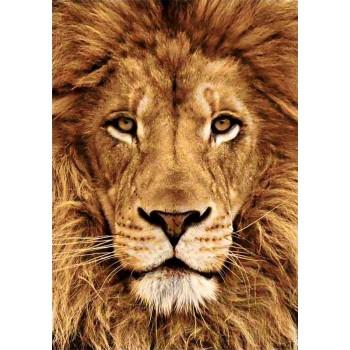 León con diamantes wizardi WD068 Lion