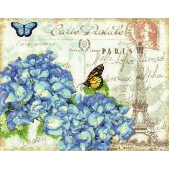 Hortensia Parisina Dimensions 70-35307 Paris Hydrangea