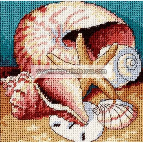 Muestrario de Conchas Dimensions 07219 Shell Collage