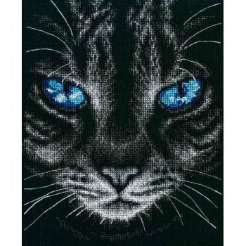 Ojos de Gato RTO M675 Sky Reflection