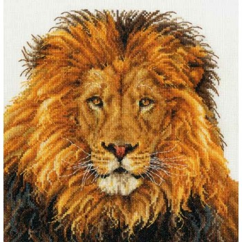 Orgullo de León DMC BK1668 Lions Pride
