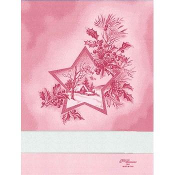 Paño de cocina estrella en Navidad Fratelli Graziano Vega CU5870