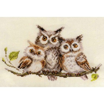 Búhos en la Rama Alisa 0-210 Owls