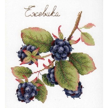 Moras MP Studia HB-696 Gifts of Nature Blackberry