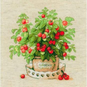 Maceta de Tomates Riolis 1983 Tomatoes in a a Pot