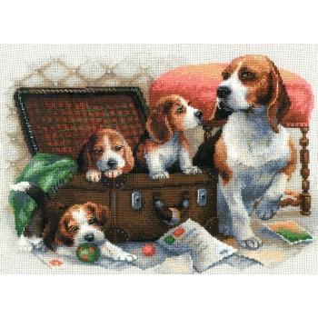 Familia Canina