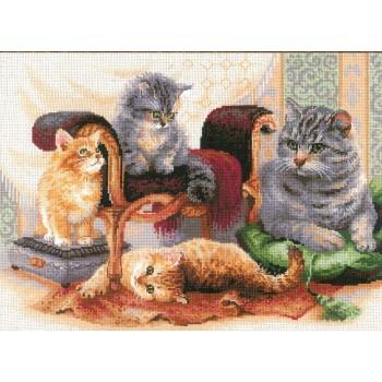 Familia Felina