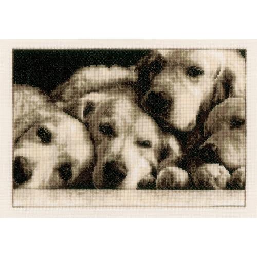 Tiernos Cachorros de Labrador