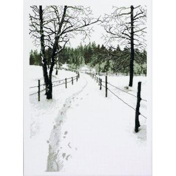El Camino Nevado