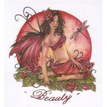 El Círculo de la Belleza