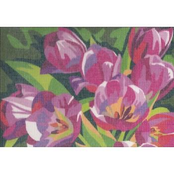 Tulipanes Rosas (NP)