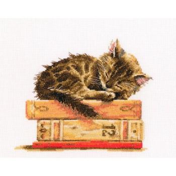 El Gatito Soñador
